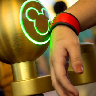 disney-magic-bands