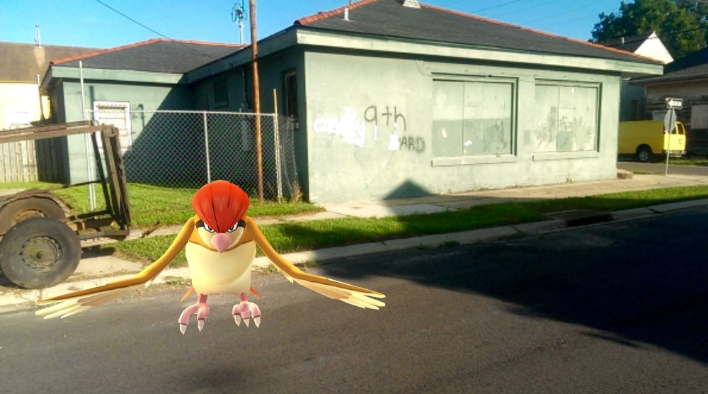 Pokemon in the Ninth Ward